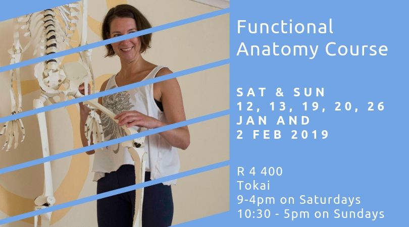 Functional Anatomy For Yoga Teachers In Training Cape Town